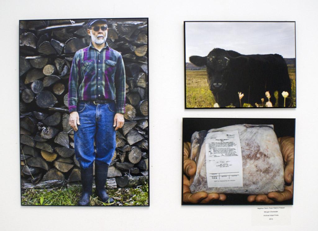 Nagimor Farm: From Field to Freezer